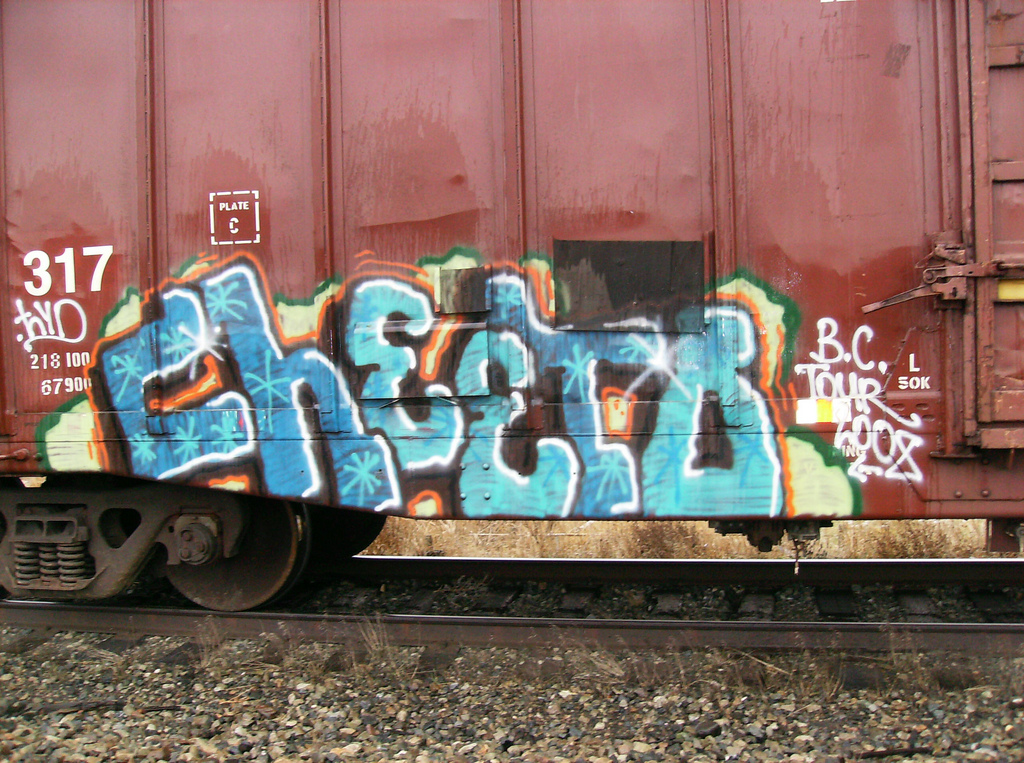 afarm3.static.flickr.com_2493_4152093352_27b38663d5_b.jpg