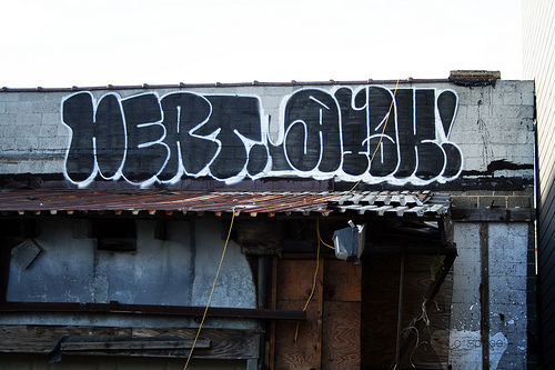 afarm3.static.flickr.com_2495_4198652016_dd55b163f8.jpg