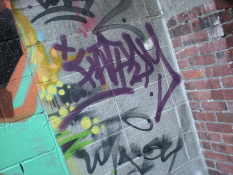 ai20.photobucket.com_albums_b250_Ryizzle2_Graffism_DSCN3258.jpg