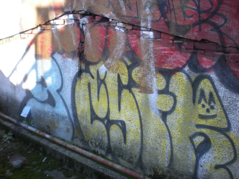 ai20.photobucket.com_albums_b250_Ryizzle2_Graffism_DSCN3250.jpg
