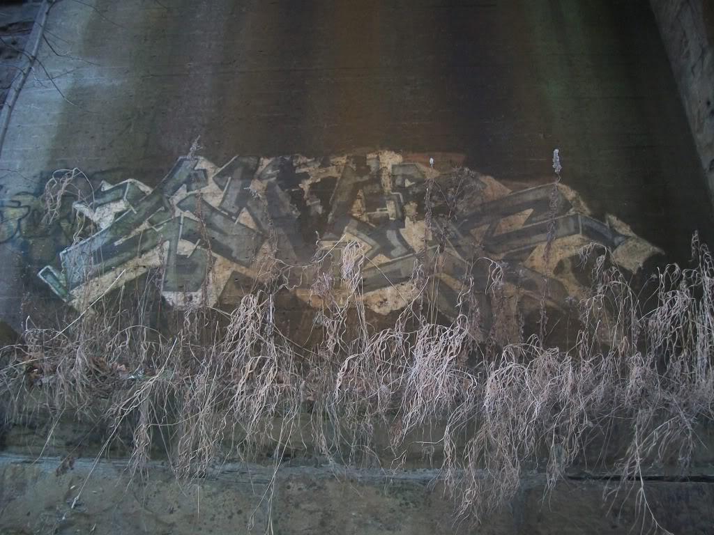 ai389.photobucket.com_albums_oo336_budzoner_NOTBUDZJUSISH_101_2778.jpg