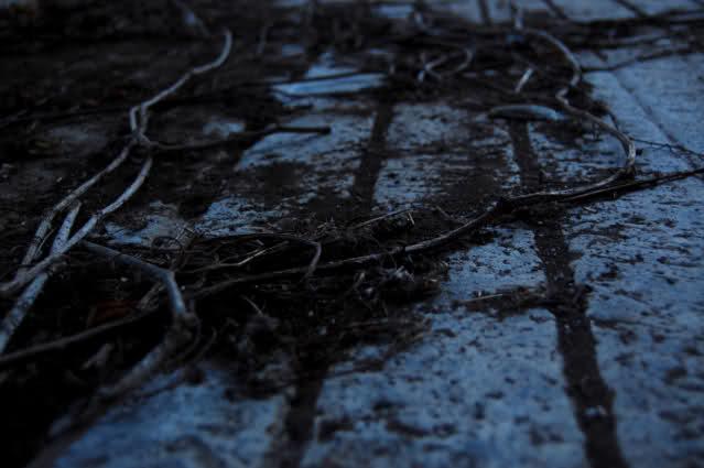 ai48.tinypic.com_j5bfo9.jpg