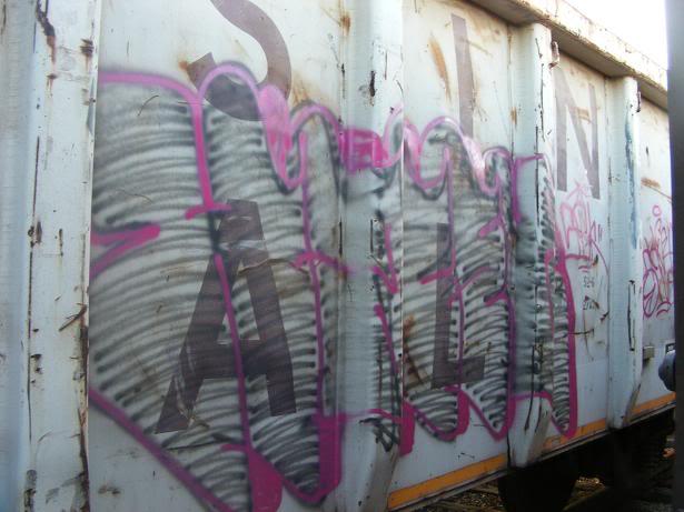 ai381.photobucket.com_albums_oo257_CaNaDuH905_trains_DSCF2475.jpg