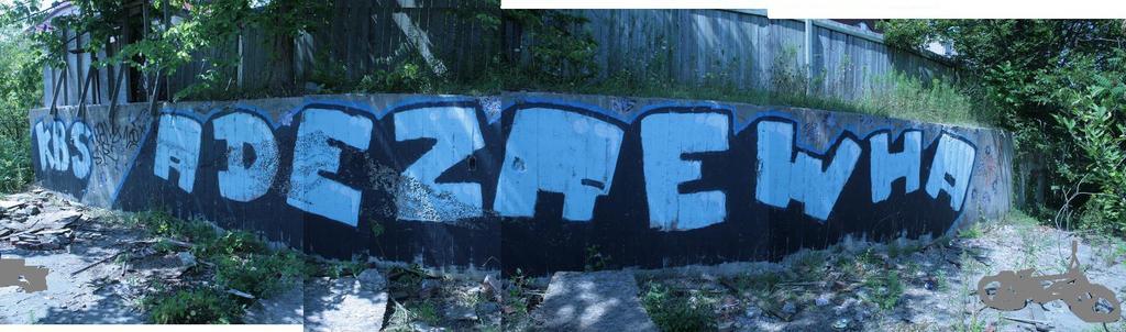 afarm4.static.flickr.com_3016_3059208701_48d978a828_o.jpg