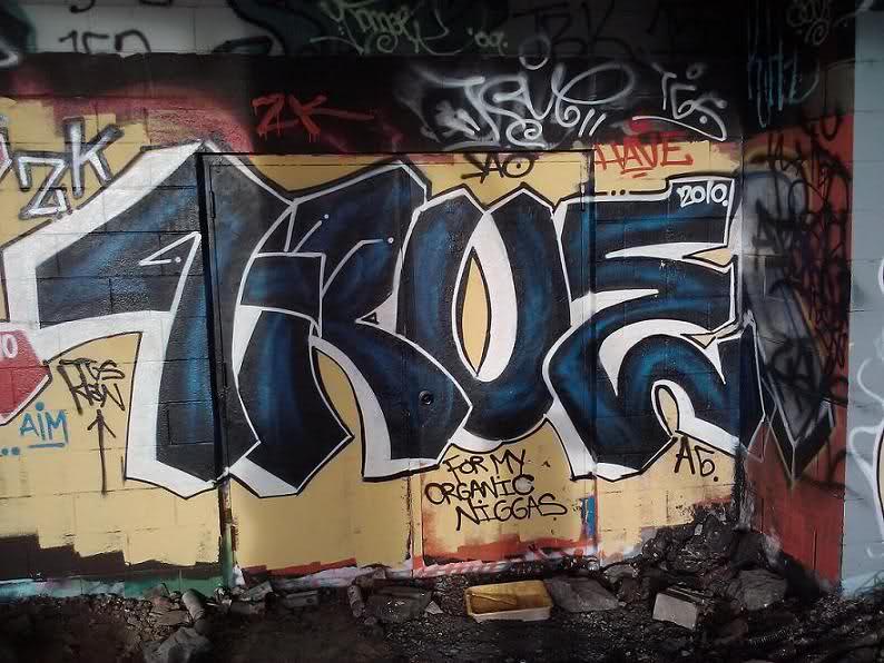 ai43.tinypic.com_5wxt05.jpg