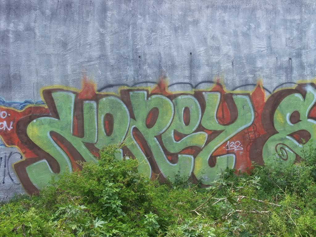 ai1009.photobucket.com_albums_af214_TROUBLE3O5_Graff_100_1172.jpg
