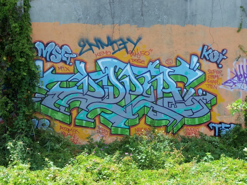 ai1009.photobucket.com_albums_af214_TROUBLE3O5_Graff_100_1180.jpg