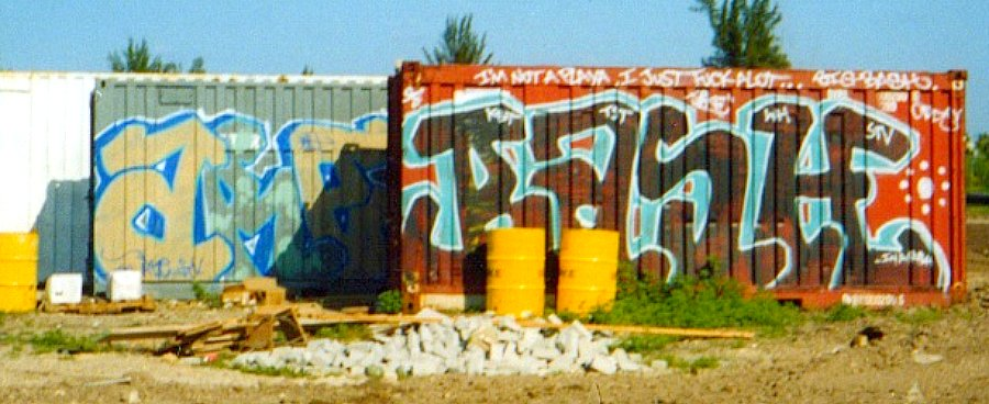 afarm4.static.flickr.com_3326_4614415593_f0fabce450_o.jpg