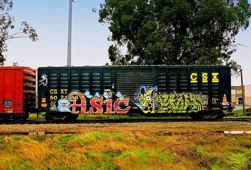 afarm3.static.flickr.com_2113_2339517880_586df2a7dd.jpg