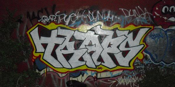 ai660.photobucket.com_albums_uu324_omarfarhan305_traps2.jpg