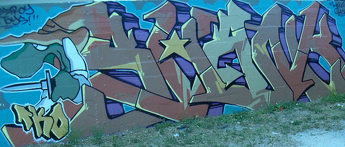 afarm1.static.flickr.com_142_321671123_4c66d3f2b8.jpg