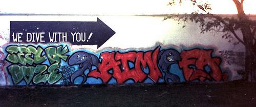 afarm4.static.flickr.com_3081_2764458846_c94dc5a53e.jpg