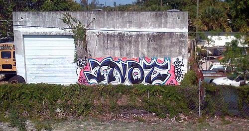 afarm3.static.flickr.com_2167_3532759786_716cf14a3d.jpg