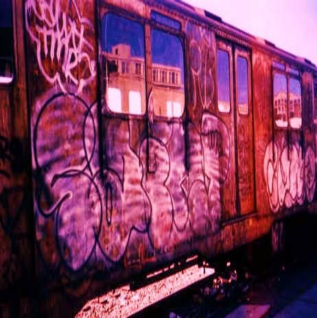 afarm5.static.flickr.com_4116_4891519586_d15e8e0827.jpg