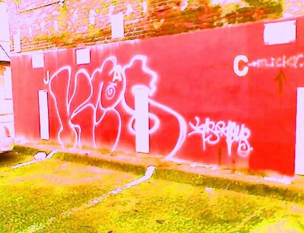 afarm5.static.flickr.com_4077_4891610816_e6410e2bb8_z.jpg