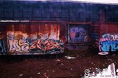 afarm5.static.flickr.com_4141_4892387357_9d9e4a8cf3_m.jpg
