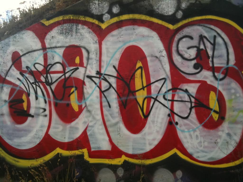 ai807.photobucket.com_albums_yy358_thatisneato_c9fe5fc5.jpg