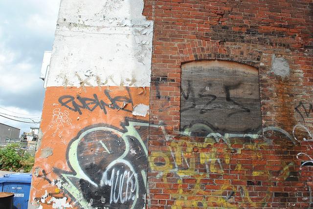 afarm5.static.flickr.com_4105_4953018344_b6e4503e72_z.jpg