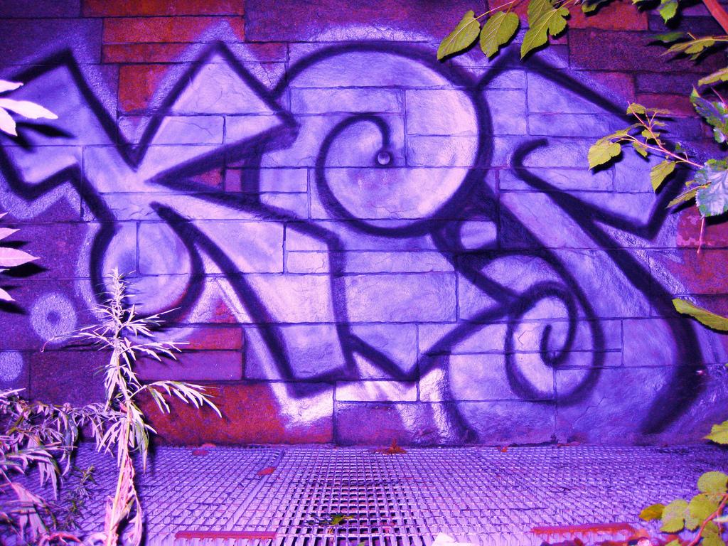 afarm3.static.flickr.com_2668_3849262415_9f67a82e1e_b.jpg