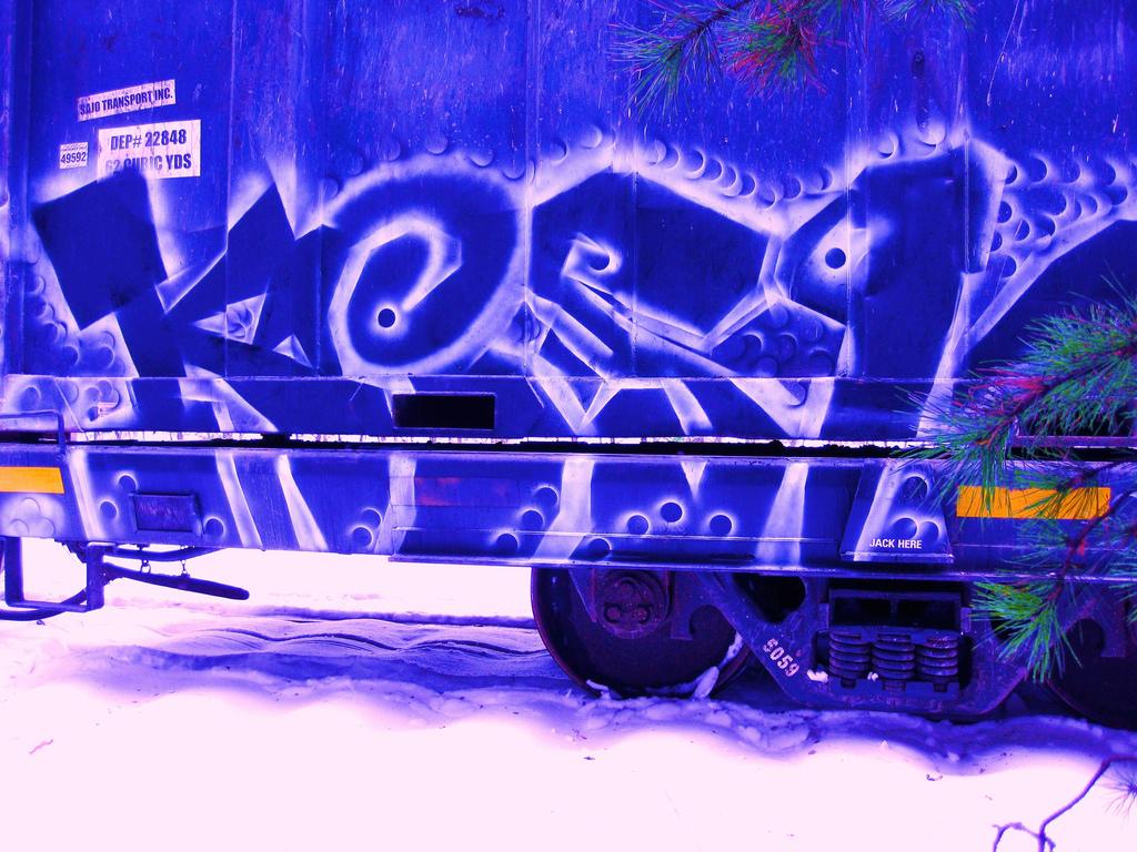 afarm5.static.flickr.com_4048_4214616790_332efeeb55_b.jpg