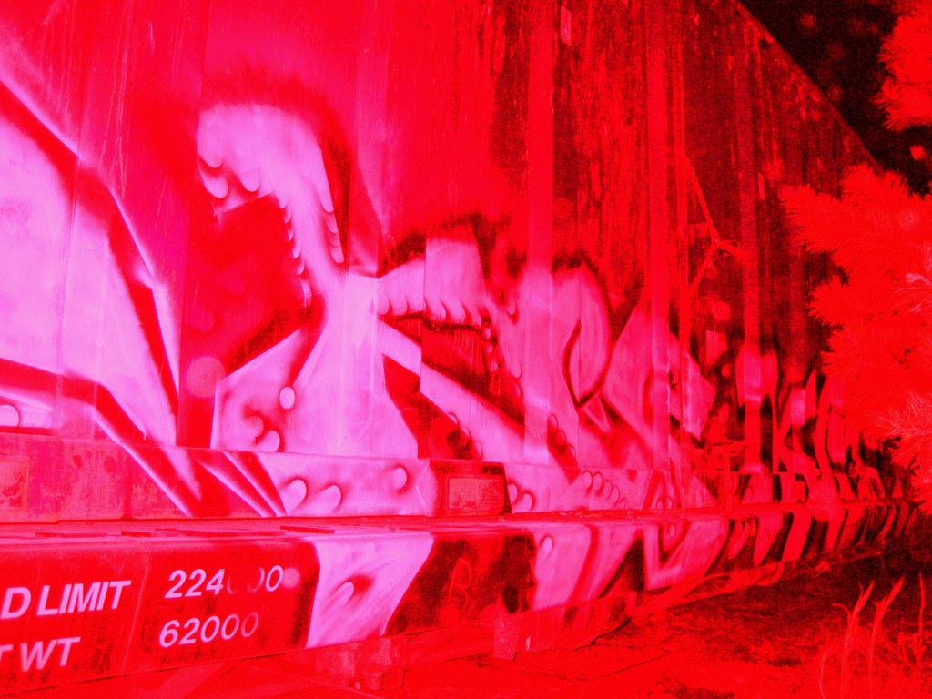 afarm3.static.flickr.com_2593_4189103014_08700f1f1f_b.jpg