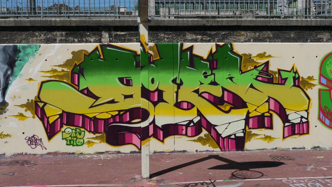Flicks Bombing Science - Gomer.Lyon.France 2010(17).jpg