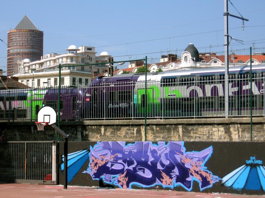 Flicks Bombing Science - Gomer.Lyon.France 2010(16).jpg