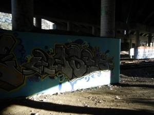 DSCN0170