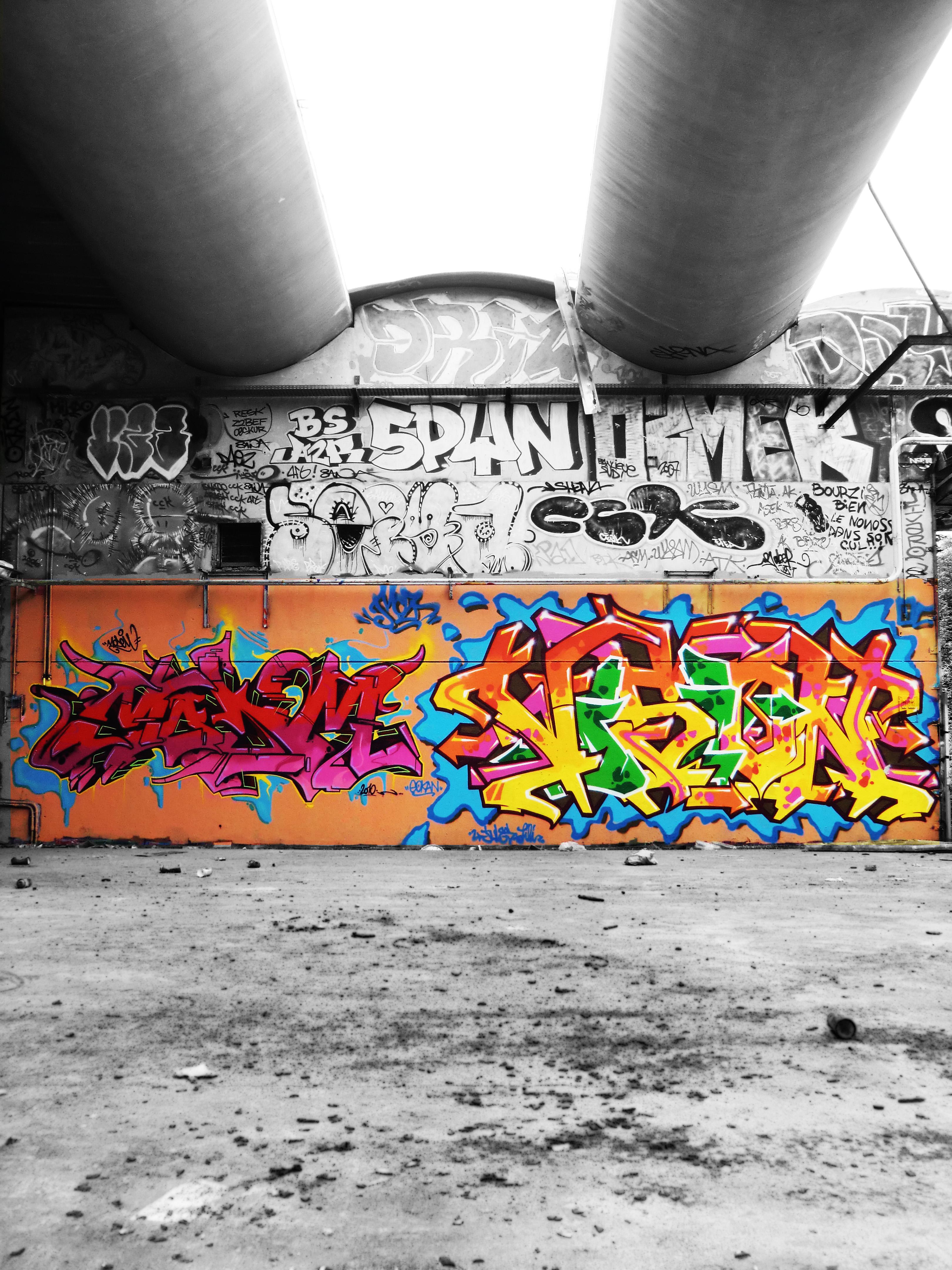 afarm5.static.flickr.com_4003_4571982770_b9721297a0_o.jpg