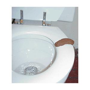 awww.realhilarious.com_images_medium_fake_craps_doos_toilet_turd_MED.jpg