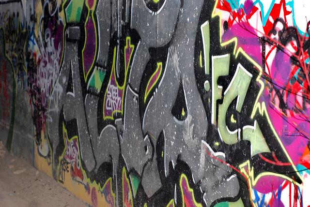 afarm6.static.flickr.com_5171_5418431073_f710156e01_z.jpg
