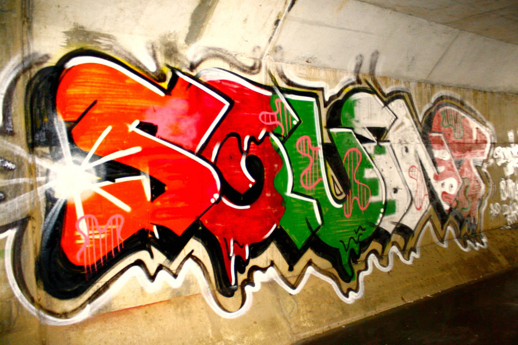 afarm6.static.flickr.com_5092_5405320905_cfd3805722_b.jpg