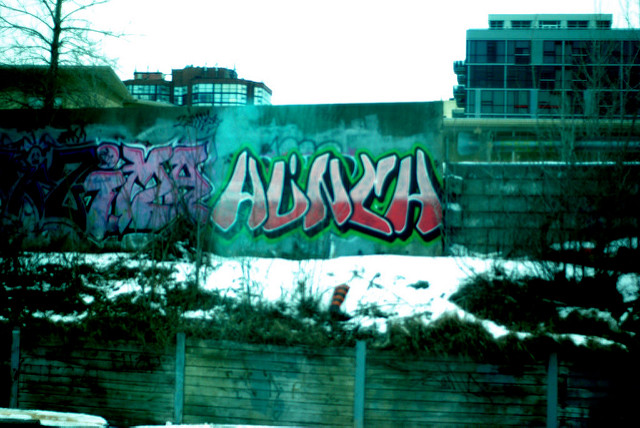 afarm6.static.flickr.com_5012_5419034292_a7bd2d8c95_z.jpg