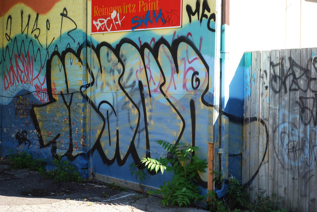afarm5.static.flickr.com_4087_4968811152_e39931a9ea_b.jpg