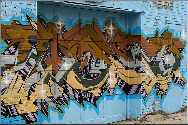 afarm6.static.flickr.com_5177_5487387465_a608e04101_z.jpg