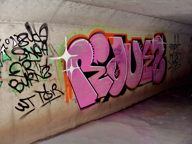 afarm6.static.flickr.com_5058_5439935612_2f10d1ba9b_z.jpg