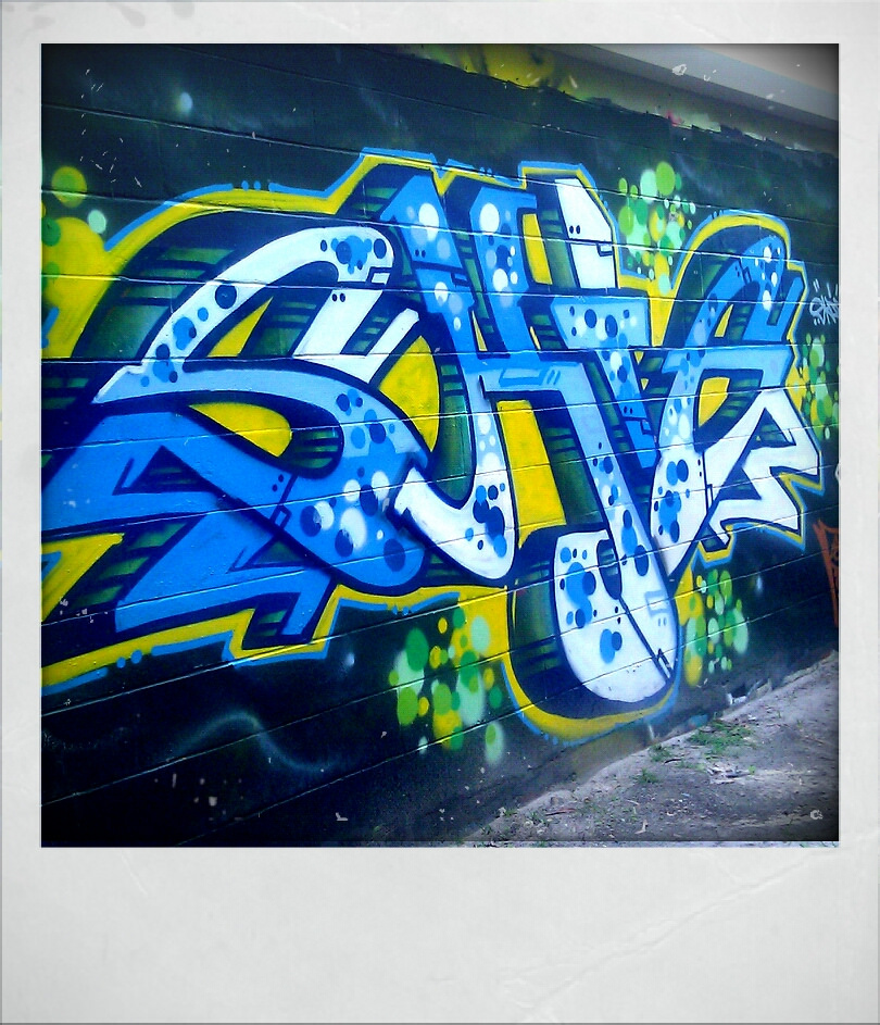 afarm6.static.flickr.com_5218_5490589339_5173cd8b81_b.jpg