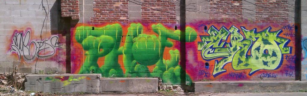 afarm6.static.flickr.com_5266_5581942901_e481e8b9df_b.jpg