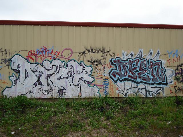 afarm1.static.flickr.com_228_464363133_952036e617_z.jpg