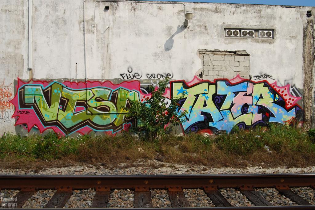 afarm6.static.flickr.com_5265_5550502489_8f4d96f420_b.jpg