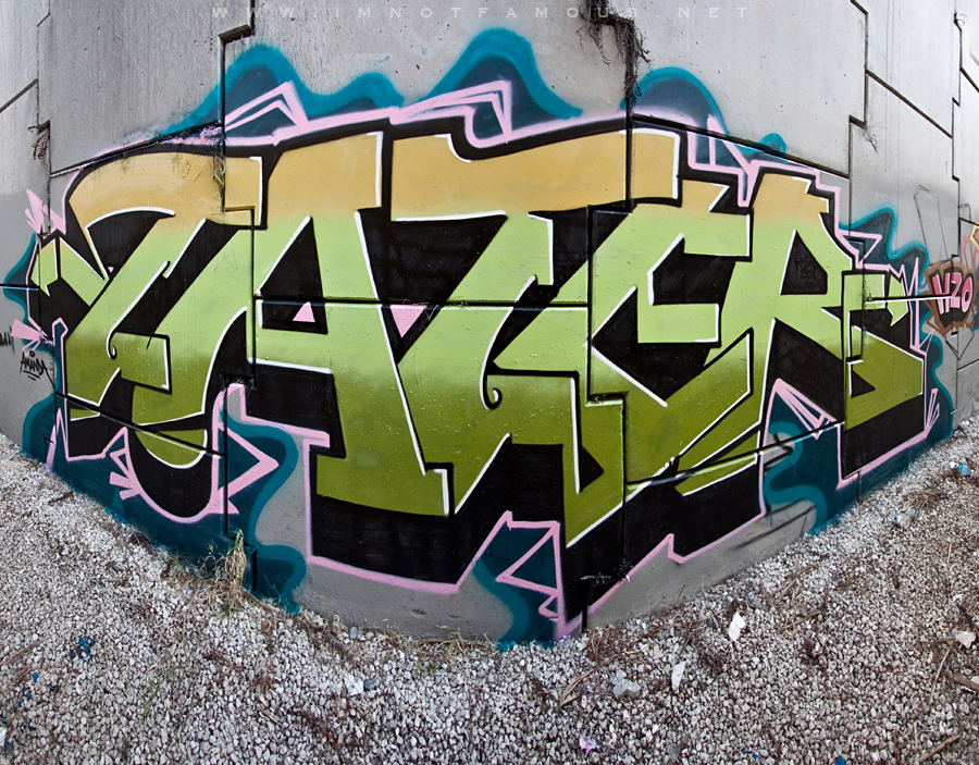 afarm6.static.flickr.com_5087_5368126628_1c34a41d8f_b.jpg