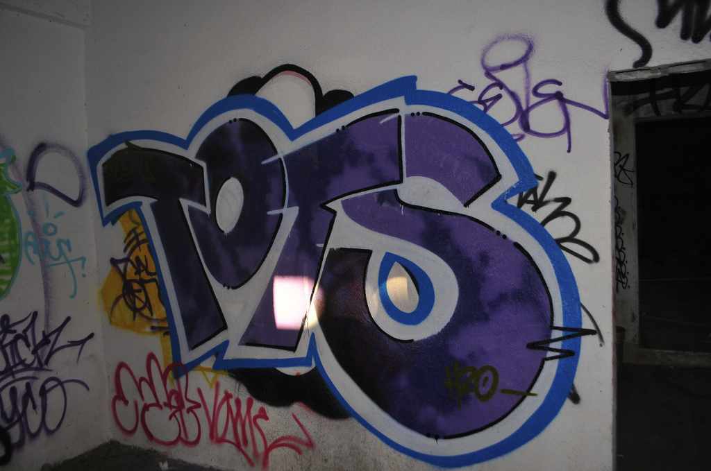afarm6.static.flickr.com_5282_5244300354_5ab64742bd_b.jpg