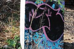 ai27.photobucket.com_albums_c156_emienpimp_4504244626_3f891effd7_m.jpg