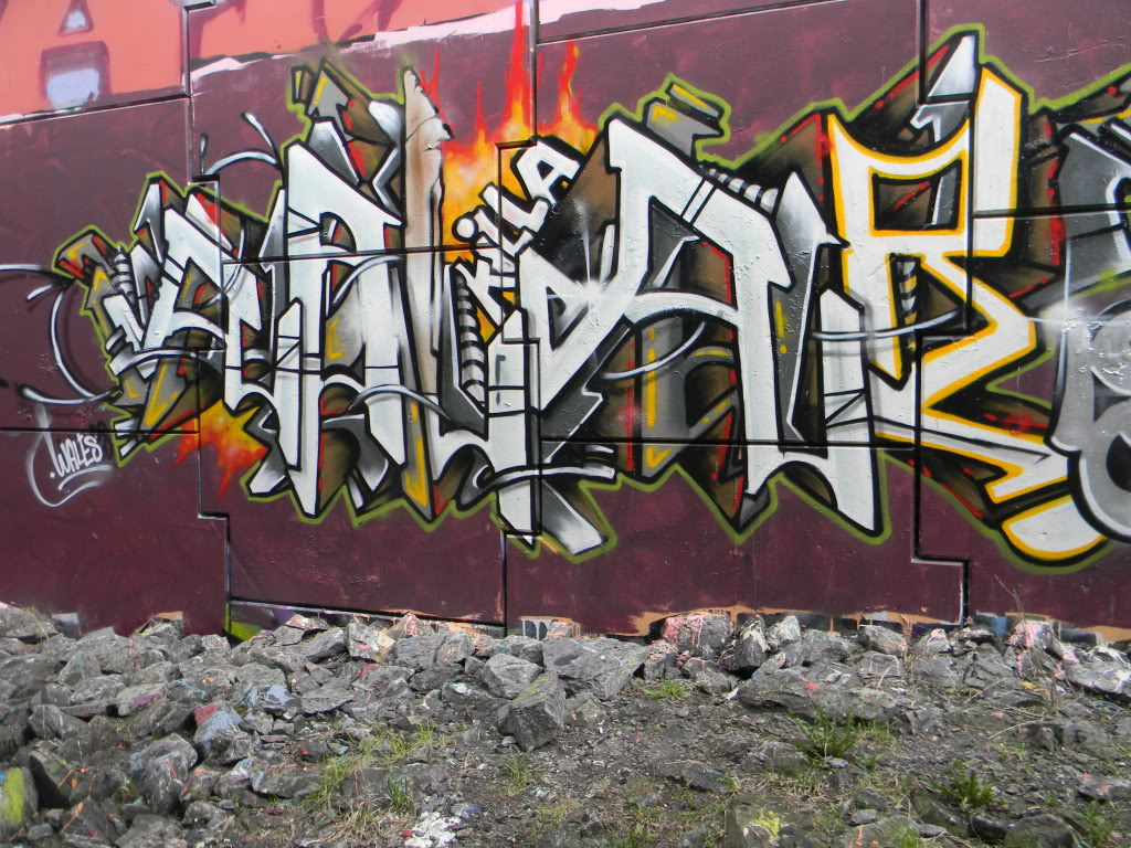 ai737.photobucket.com_albums_xx12_bazookatooth_2010_pieces_076.jpg