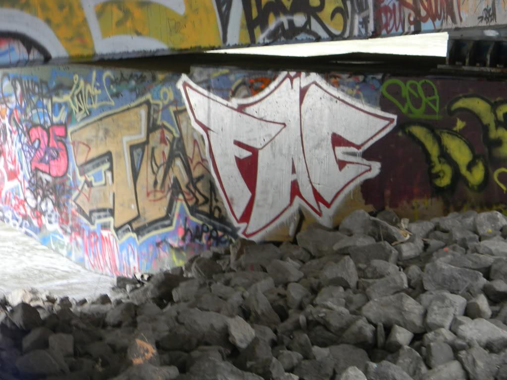 ai737.photobucket.com_albums_xx12_bazookatooth_2010_pieces_072.jpg