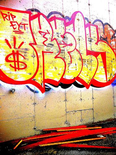 afarm6.static.flickr.com_5213_5532846761_b8f80d4813.jpg