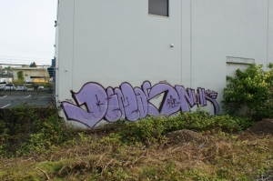 DSC03826
