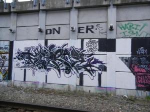 DSCN1684