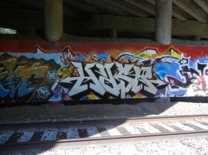 DSCN1875