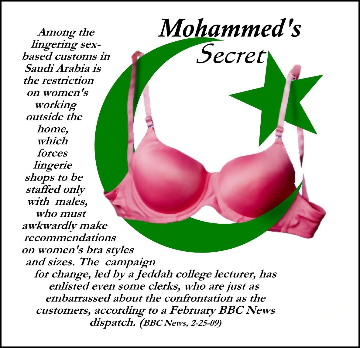 alemurking.files.wordpress.com_2009_05_mohammeds_secret1.jpg